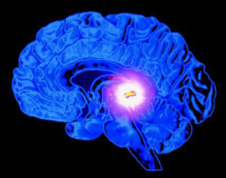 The Pineal Gland — The Bridge to Divine Consciousness our Pineal Glands may play an even more crucial role when it comes to the interaction with the soul and consciousness.
